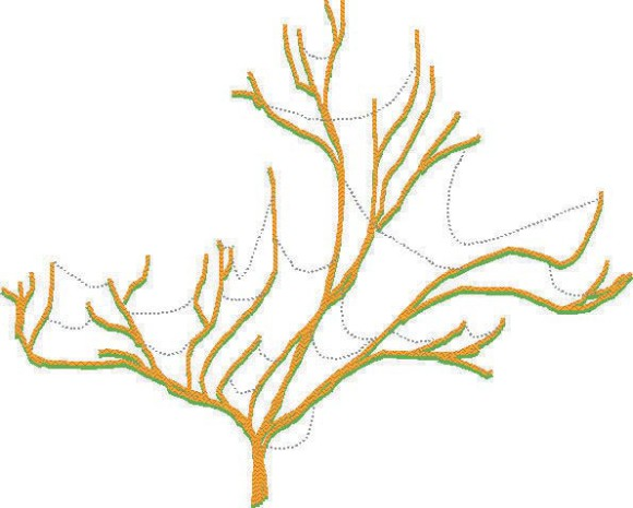 Схематичное изображение современного «древа жиз ни». Источник: www.ncbi .nlm.nih.gov/pmc/articles/PMC1233577