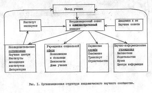 Организационная структура академического научного сообщества