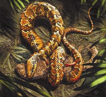 Рис. 2а. Художники по-разному представляют себе четвероногую змею. Реконструкция с млекопитающим — http://news.sciencemag.org/