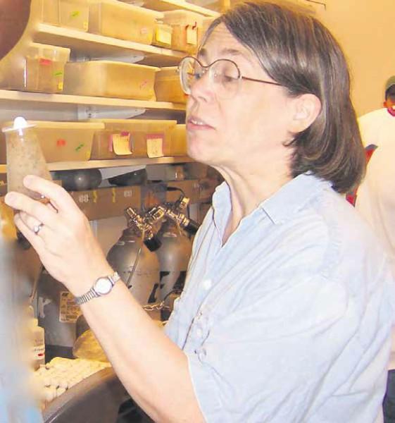 Сара Элджин. Фото: «Википедия»