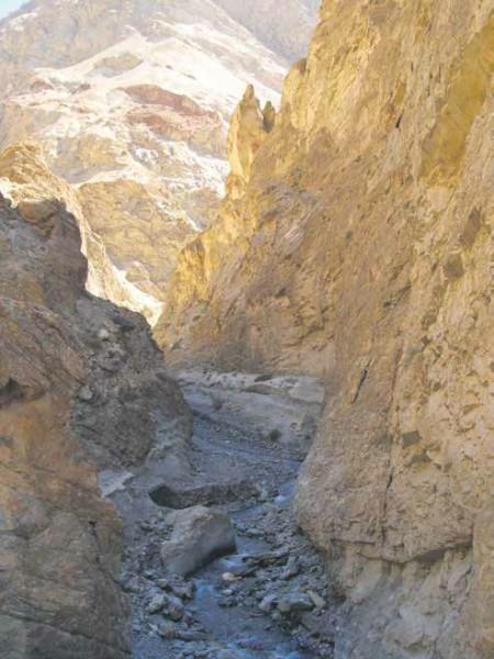 Ущелье (вид сверху). Фото Б. К. Ганнибала