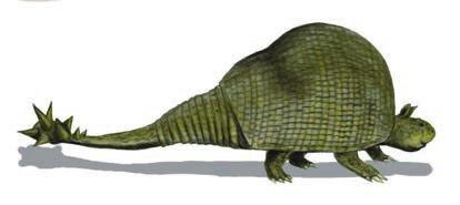 Рис. 5. Doedicurus clavicaudatus. Рисунок Нобу Тамура (2007). «Википедия»