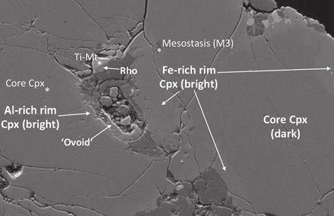 Клеткоподобная структура в метеорите Нахла. (c) Elias Chatzitheodoridis, Sarah Haigh, Ian Lyon