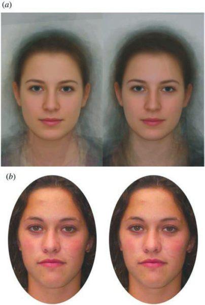 Прототипы и стимулы. (а) Прототипы лица в фазе овуляции (слева) и лютеиновой фазе (справа) представляют собой усредненные изображения 18 девушек. (b) Лицо-стимул: слева фертильная, справа лютеиновая фаза [4]