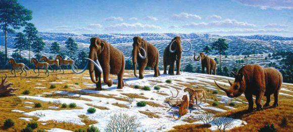 "Шерстистые мамонты (Mammuthus primigenius) в тундростепном ландшафте. Рис. Mauricio Antоn из статьи Caitlin Sedwick (1 April 2008) ""What Killed the Woolly Mammoth?"". PLoS Biology 6 (4): e99. DOI:10.1371/journal.pbio.0060099"