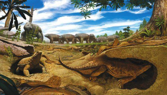 Рис. 5. В Южной Африке 260 млн лет назад. Художественная реконструкция. На переднем плане Eunotosaurus роет нору в песке на берегу высохшего пруда, чтобы спастись от жары. На заднем плане стадо Bradysaurus собралось вокруг сохранившейся мутной лужицы (http://phys.org/)