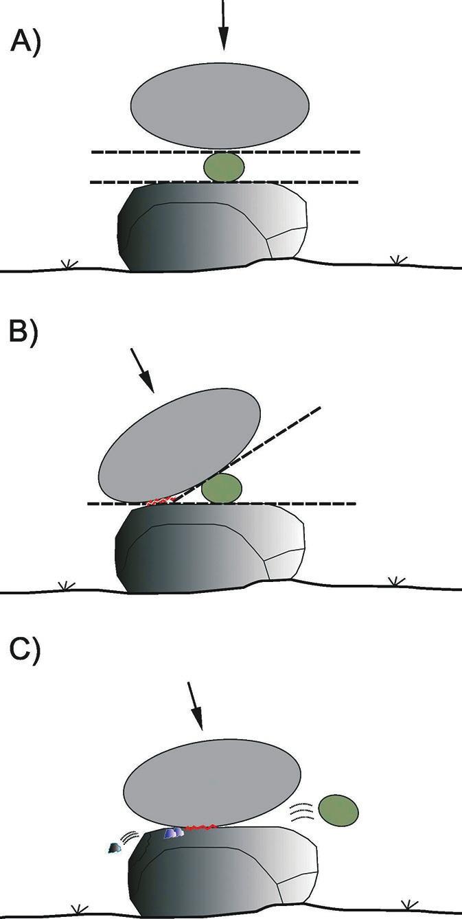 Рис. 3. При колке орехов на поверхности камней возникают износы, различные по механизму образования: А) компрессия; В) компрессия и периферийный контакт; С) непосредственное взаимодействие