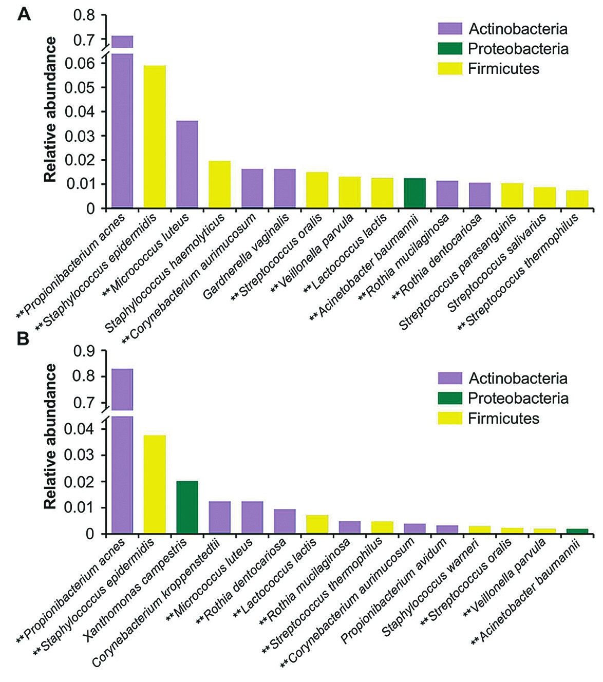 Рис. 7. Бактерии на однодолларовых купюрах в Нью-Йорке зимой (А) и летом (В) 2013 года [Maritz 2017]. Цвет показывает филум. Звездочки — виды, многочисленные в обеих выборках. Вертикальная ось — относительная частота вида