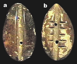 6D. Две имитации каури из нефрита, 32 × 18 мм, периоды Шан и Чжоу, ок. 1400–900 годы до н. э. [3]