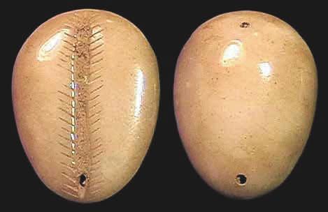 6E. Имитация каури из нефрита, 20 × 15 мм, периоды Шан и Чжоу, ок. 1400–900 годы до н. э. [3]