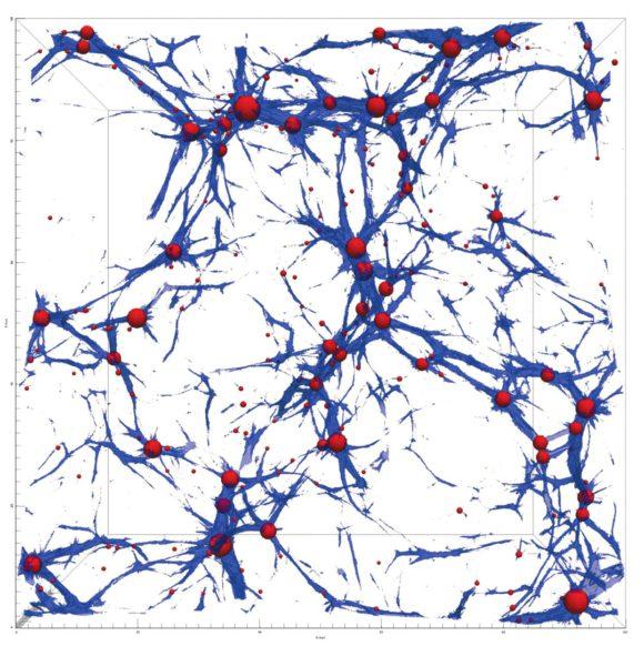 Рис. из статьи. С. Шандарина и Н. Рамачандры. Крупномасштабная структура распределения галактик и потоков вещества по результатам численного моделирования. Cторона квадрата составляет сотни миллионов световых лет. Синим цветом отмечены волокна, по которым течет вещество (arxiv.org/pdf/1412.7768.pdf)