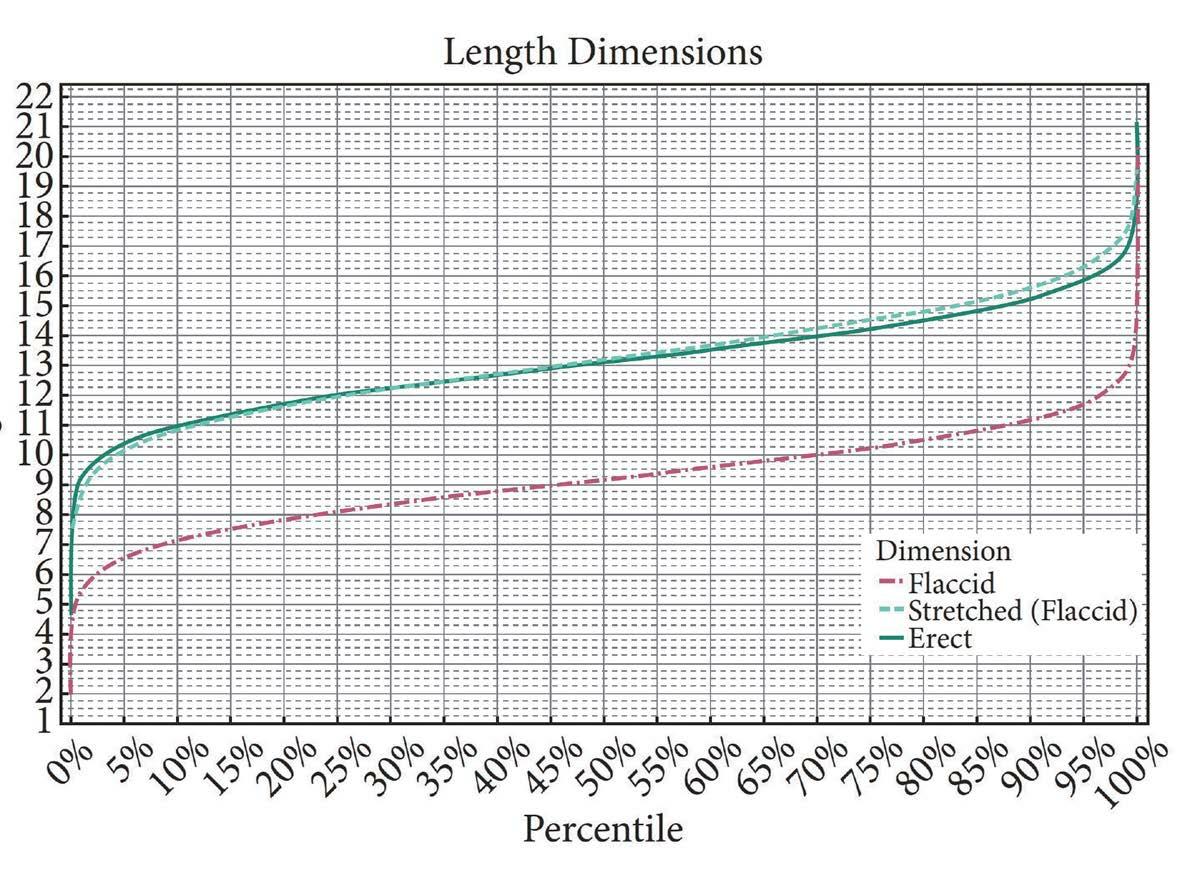 Пенис окружностью 12 см
