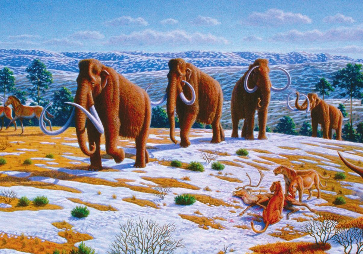 Шерстистые мамонты в период позднего плейстоцена. Художник Antón Mauricio (DOI: 10.1371/journal.pbio.0060099)