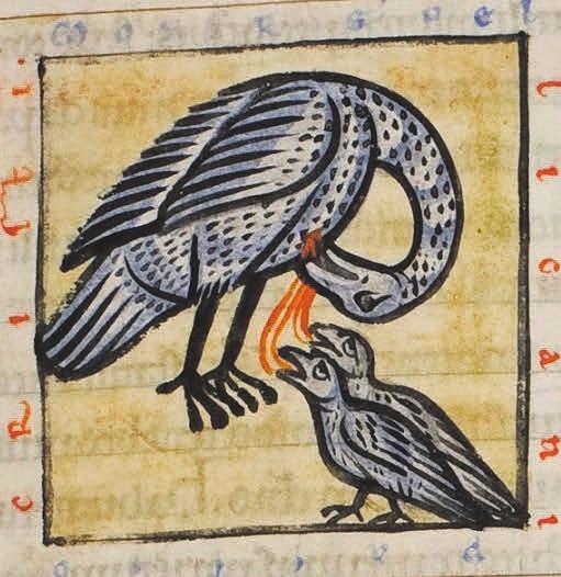 Пеликан оживляет птенцов своей кровью