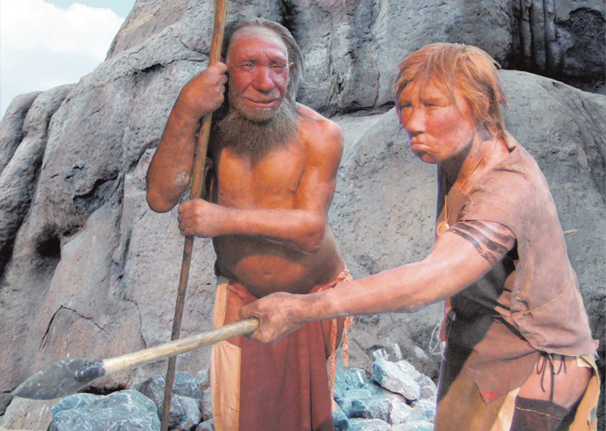 Реконструкция неандертальских мужчины и женщины, Неандертальский музей, Меттман, Германия («Википедия»)