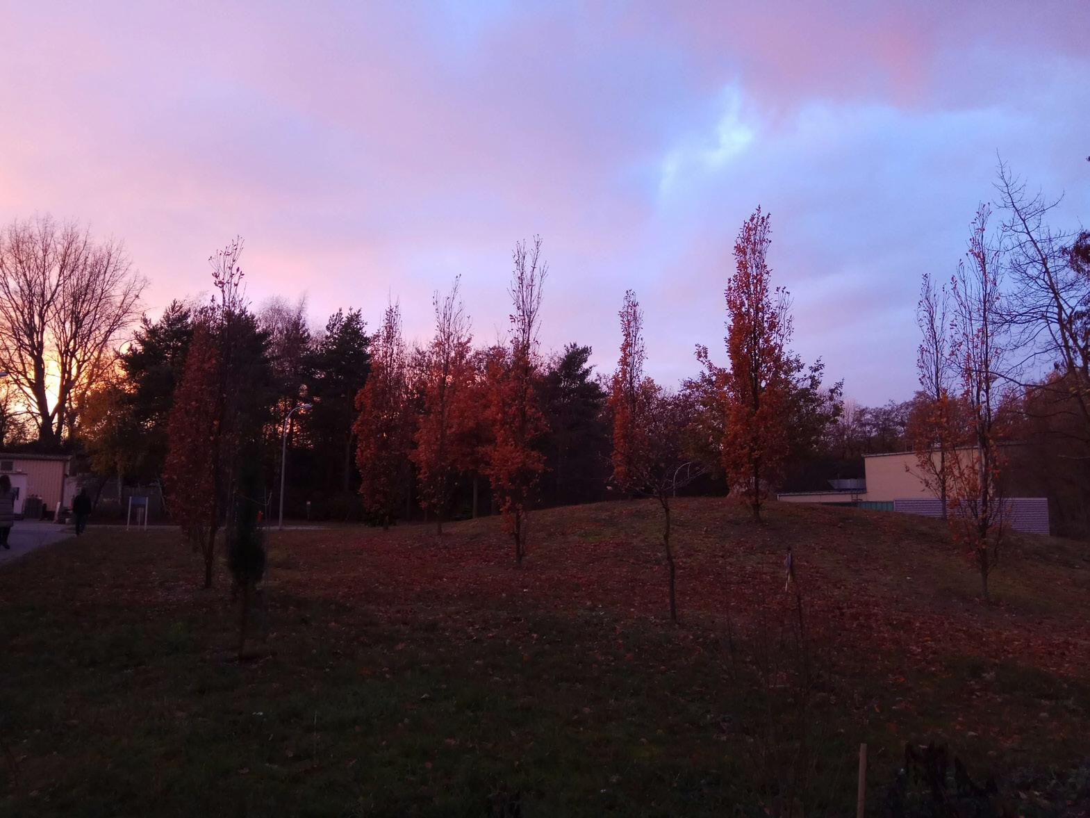 Закат над ускорителем. Под этим идиллическим пейзажем — излучение мощностью более 17 ГэВ