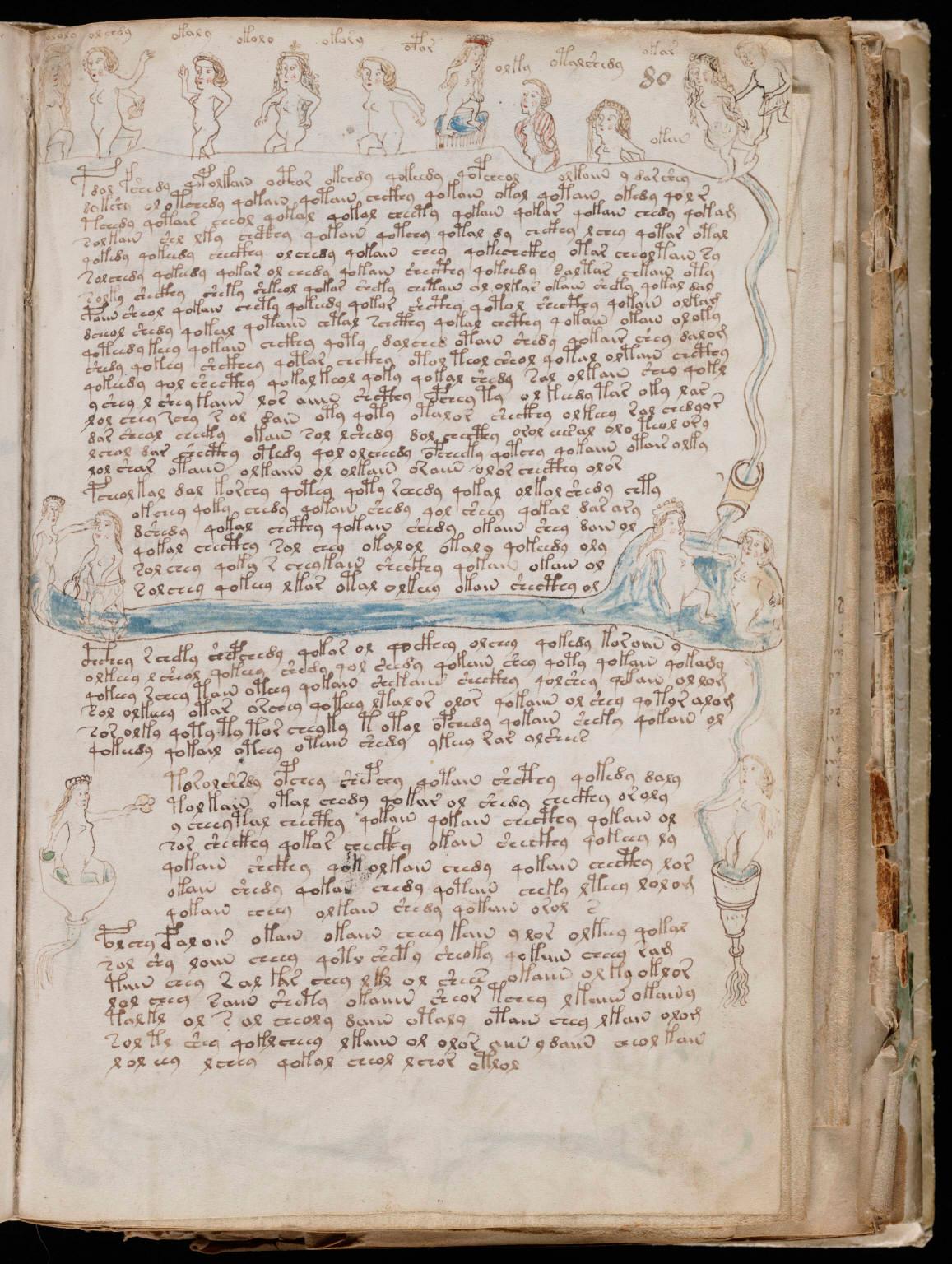 Текст документа остается загадкой для лингвистов. Может быть, в XV веке тоже были тролли?