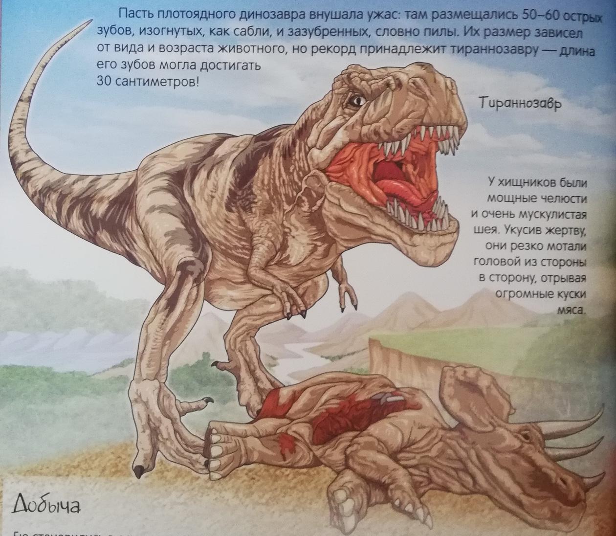 Илл. из книги К. Богаэра «Динозавры. Нескучная энциклопедия». 2016