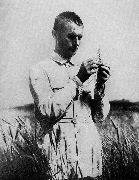 Т. Д. Лысенко после избрания его в 1934 году академиком Всеукраинской академии наук