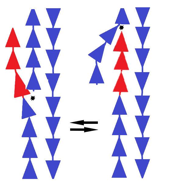 Рис. 2. Два варианта починки ДНК (рисунок автора)