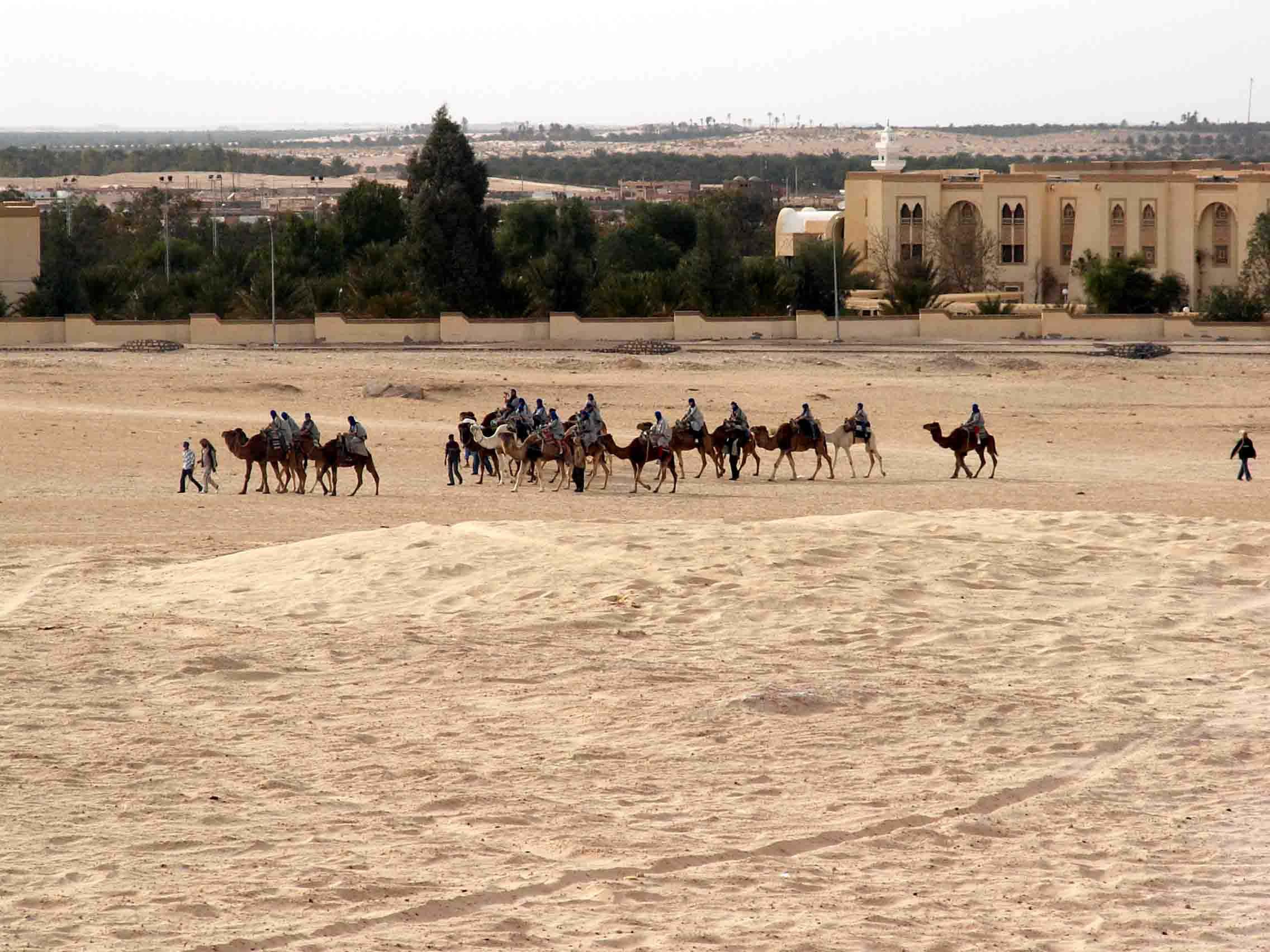 На краю Сахары. Тунис. Фото С. Н. Литвинчука. 15.03.2005