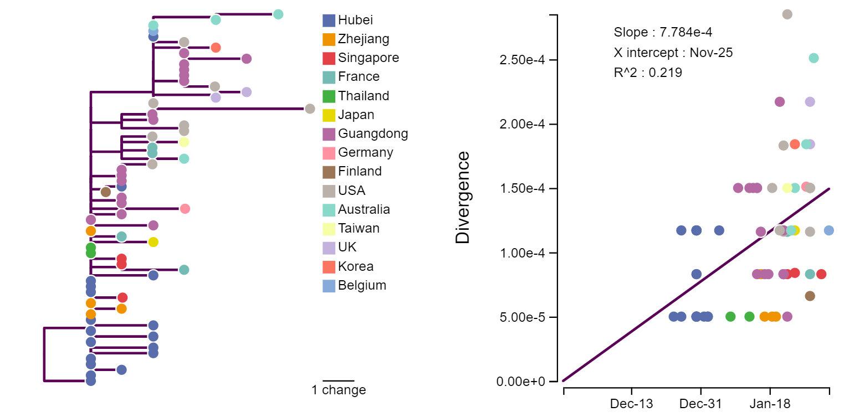Рис. 2. Эволюционное древоnCoV [7](слева) и расстояние между образцом и корнем дерева в зависимости от даты получения образца