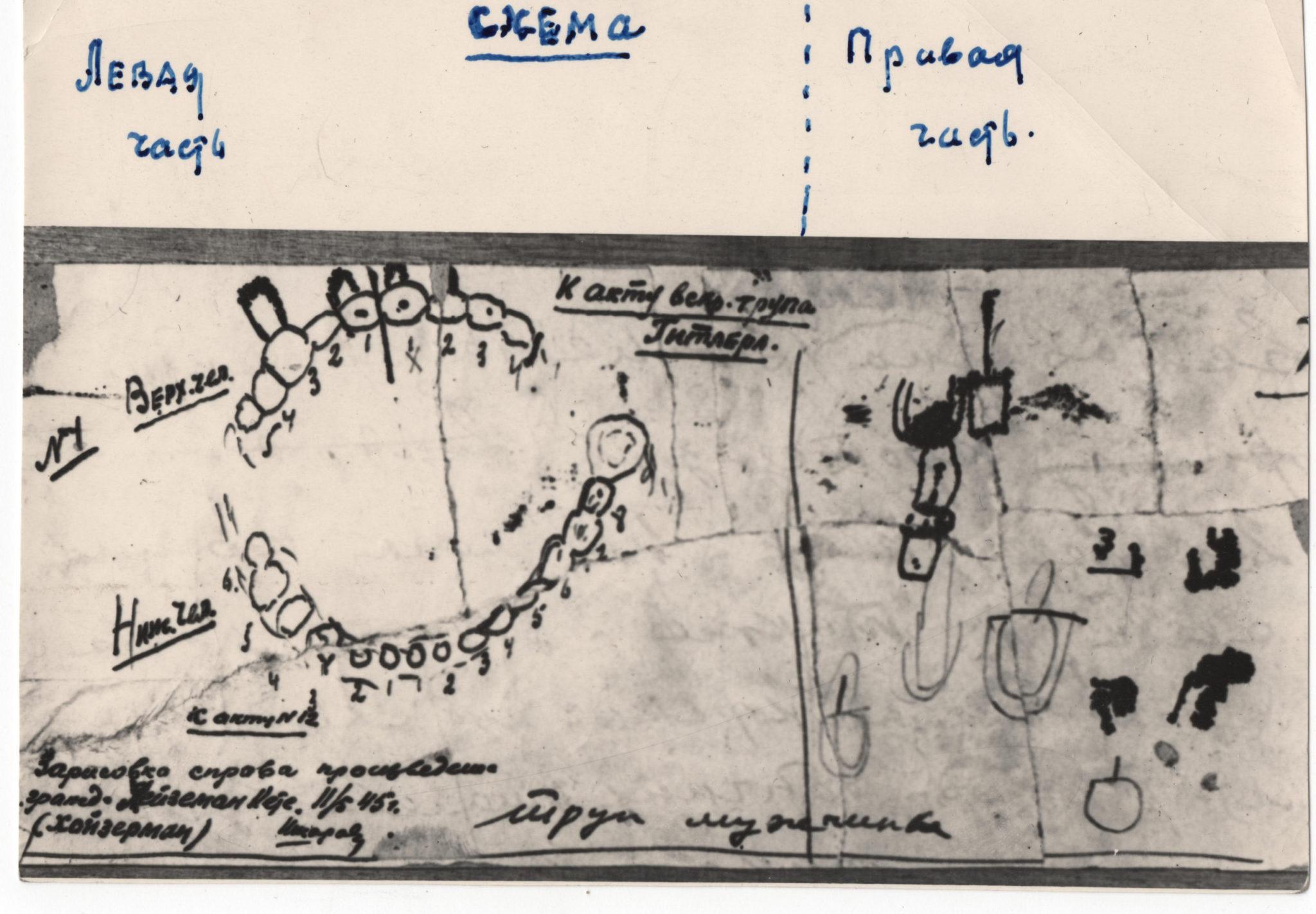 Схема зубов Гитлера, составленная при допросе Кете Хойзерман и проверенная патологоанатомом Ф.И. Шкаравским, который руководил вскрытием трупа фюрера