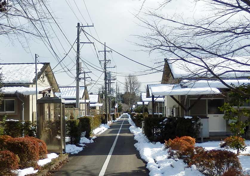 Поселок бывших пациентов Тама Дзэнсёэн (japanvisitor.com)