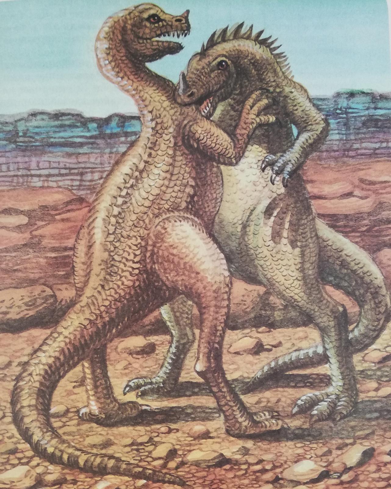 Схватка цератозавров