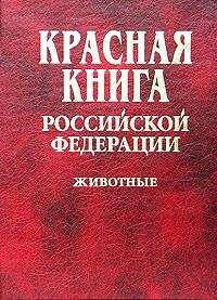 Красная книга России под угрозой. С сайта ecoportal.ru